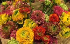Consegne a domicilio fiori